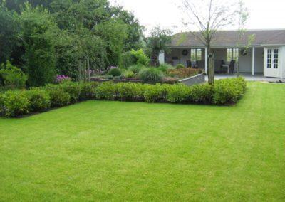 tuin-grasveld